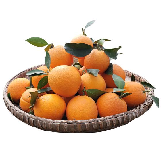【嘉州園旗艦店】     搶~贛南新鮮農家現摘臍橙(每個ID限購1件)