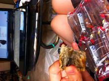 """我爱吃鱼片。但是,不知道是否卫生…… //<a href=""""http://tui.etao.com/hong"""">小红仔:</a>我上次买的鱿鱼片是我们广西北海这边的店铺的、"""