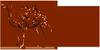 [Camel/骆驼]满499减50